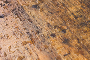 Water droplets on hardwood floor